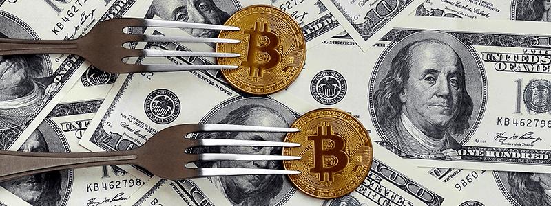 仮想通貨のハードフォークとは?ビットコイン(BTC)に与える影響を探る